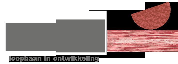 Wortelboer loopbaan in ontwikkeling